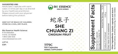 She Chuang Zi